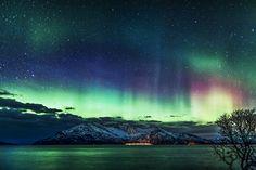 Aurora (by Wayne Pinkston)