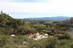 Essential Moment in Napa Valley: Auberge du Soleil