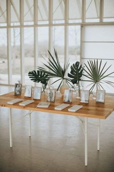 Sentimental framed photos and tropical greens shined at this minimalistic reception wedding reception Modern Minimalist Green Wedding Ideas for The Simple + Chic Bride Rustic Wedding Decorations, Wedding Table Centerpieces, Centerpiece Ideas, Tropical Centerpieces, Modern Centerpieces, Centerpiece Flowers, Wedding Tables, Table Decorations, Modern Tropical
