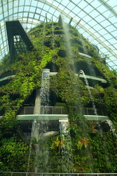 Cloud Forest, Singapore | The Waterfall of Cloud Forest by GengHui Tan