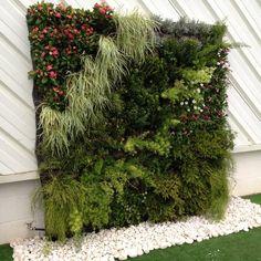 Jardín vertical Green