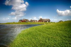 Warft auf Hallig Gröde Salt Marsh, North Sea, Baltic Sea, Places Ive Been, Beaches, Golf Courses, Trail, Germany, Around The Worlds