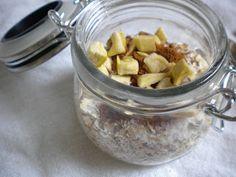 Homemade Cinnamon Apple Instant Oatmeal Mix