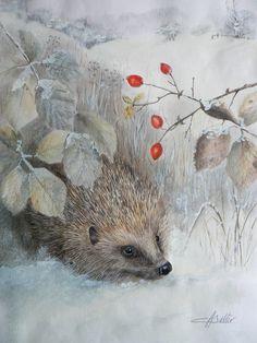 Christmas Hedgehog by Cat Salter