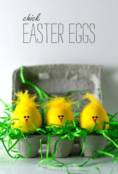 Chick Easter Eggs - Fun and Easy Easter Craft Idea for Kids