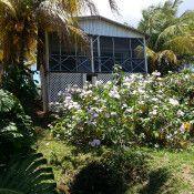 Vieques villa rentals