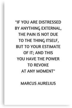 'Stoic Philosophy Quote - Marcus Aurelius - If you are distressed' Canvas Print by IdeasForArtists Wisdom Quotes, Words Quotes, Wise Words, Quotes To Live By, Me Quotes, Motivational Quotes, Inspirational Quotes, Daily Quotes, Sayings