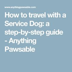 How to travel with a Service Dog: a step-by-step guide - Anything Pawsable