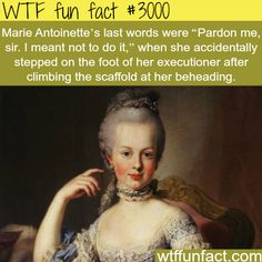 "Marie Antoinette's last words - ""Pardon me, sir. I meant not to do it."" When she accidentally stepped on the foot of her executioner after climbing the scaffold at her beheading."