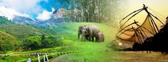 Beautiful Kerala - Munnar Thekkady Tour Package - http://www.discover-india.in/kerala-tour-packages/munnar-thekkady-tour-5days.html