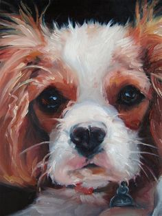 The post Cavalier King Charles Spaniel, Elegant Light, custom Pet Portrait Oil Painting by puci appeared first on Jim Norman Dogs. Cavalier King Charles, King Charles Dog, King Charles Spaniel, I Love Dogs, Cute Dogs, Dog Competitions, Spaniel Puppies, Dog Portraits, Painting Portraits