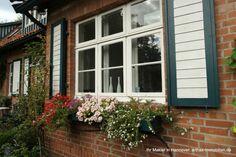 Teil des Hofensembles in Isernhagen: Fensterdetail Wohnhaus Sweet Home, Windows, Facades, Flowers, Houses, Detached House, Real Estates, Garden Cottage, Homes