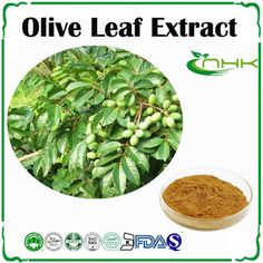 Olive Leaf Extract	http://www.gmp-factory.com/herbal-medicine/antiviral-/olive-leaf-extract.html  http://www.gmp-factory.com/herbal-supplements/-phytoestrogen/wild-yam-extract.html