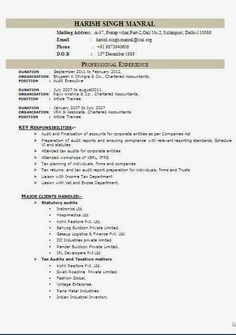 Bsc Honours In Information Technology Fresher Resume Format In