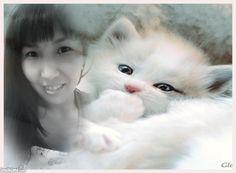 Kitten animated