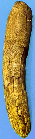 This is known as the Venus of Predmost  Photo: J Jelinek, 'The Evolution of Man'   Stylised figure of a woman engraved on a mammoth tusk from Predmost, an area close to Dolní Věstonice. Height 15.5 cm
