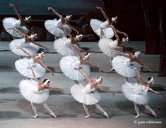 The Mariinsky Ballet in Swan Lake. Photo by Gene Schiavone.