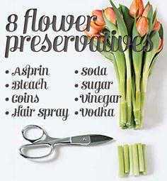 diy bouquet flower preservatives