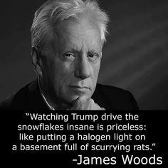 Watching Trump drive the snowflakes insane is priceless. - James Woods ~ RADICAL Rational Americans Defending Individual Choice And Liberty Into The Woods Quotes, Dont Tread On Me, Conservative Politics, Political Views, Political Beliefs, God Bless America, Social Issues, Einstein, Hilarious