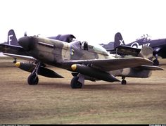 A Guatemalan Air Force Mustang taxied past a line of Corsairs. Military Weapons, Military Aircraft, P51 Mustang, Aircraft Pictures, Wwii, Air Force, Fighter Jets, Aviation, American