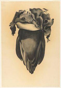 Georgia O'Keeffe, Banana Flower,1934