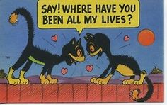 Old Comic Humor Postcard 2 Cats Meet You Are My Moon, My Champion, Cute Black Cats, Black Kitty, Vintage Comics, Vintage Cat, Vintage Valentines, Cat Valentine, Illustrations