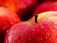Vše o jablku: pěstování, sklizeň, uskladnění, moštování, sušení...