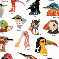 [Birds+A+to+Z_detail.jpg]