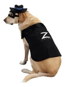 This should so be Zorro for Halloween!