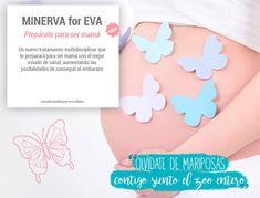 Prepárate para ser mamá con el nuevo programa MINERVA for EVA, un plan para lograr el peso adecuado antes de comenzar tu tratamiento de fertilidad. Plans, Health Tips, November