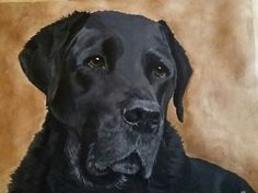 portret Bo maart 2016 by Mies van Lankveld Oude Avenhuis