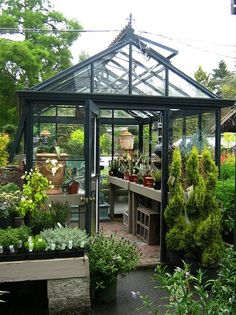 We enlist five outstanding best greenhouse ideas for beginners. These greenhouse ideas will enable you to devise strategies to shape the best possible model. Indoor Greenhouse, Greenhouse Growing, Small Greenhouse, Greenhouse Plans, Greenhouse Gardening, Greenhouse Wedding, Plant Watering System, Wooden Greenhouses, Potting Sheds