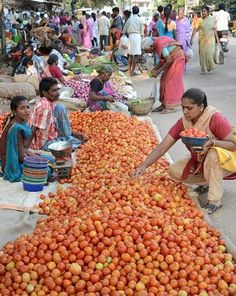 Weekly vegetable market at Puliakulam, in Coimbatore, Tamil Nadu