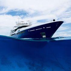 Motor Yachts, Opera House, Building, Travel, Viajes, Buildings, Destinations, Traveling, Trips