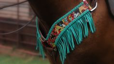 Quincy Tack and Belts | stsranch.com Buffalo Billie Headstall and Breast Collar w/ Fringe