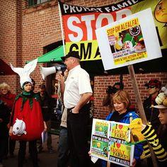 Don & Deb Vise at the Anti-GMO Alfalfa Rally in Toronto April 9 2013. cban.ca Hey Farmers!