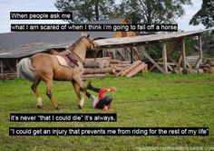 and the horse could loose his life you selfious prick