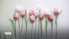 How to make Crepe Paper Flower : Tulips [easy & simple]