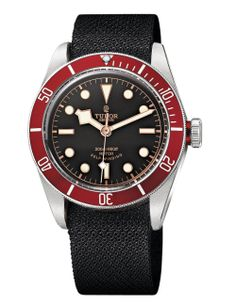Tudor heritage black bay watch.