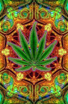 Marihuana que calma... - http://growlandia.com/highphotos/media/marihuana-que-calma/