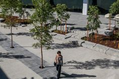 Winners announced: 2018 VIC Landscape Architecture Awards   Landscape Australia Landscape Architecture Design, Architecture Awards, Landscape Architects, Design Theory, Garden Landscaping, Home And Garden, House Design, Australia, Space