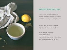 Lemon Bay Leaf Tisane - Tea : Highly praised by both Romans and Greeks, as they believed that the herb (bay leaf) symbolized wisdom, peace, and protect . Herbal Remedies, Home Remedies, Sources Of Vitamin A, Types Of Tea, Bay Leaves, Folic Acid, Herbal Medicine, Healthy Recipes, Healthy Foods