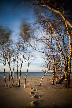 Górki Zachodnie beach - romantic place... / #gdansk #ilovegdn #beach #sun #water #sand #magicalplace #romantic #Gorkizachodnie / photo: Sebastian Chmielewski