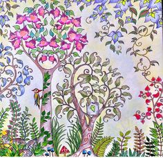 @pinksecretbr floresta encantada