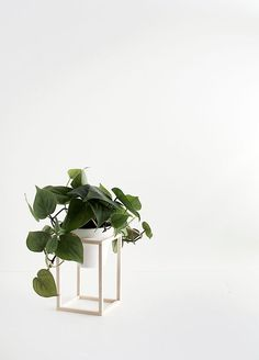 DIY Mini Plant Stands                                                                                                                                                                                 Más