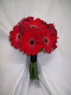 Wedding bouquet- Red gerber daises- Bridesmaids bouquet - posey bouquet style all it needs is a big teal ribbon.
