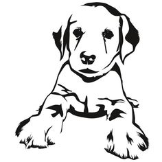 Wood Burning Stencils, Wood Burning Patterns, Silhouette Curio, Dog Silhouette, Animal Line Drawings, Art Drawings, Dog Coloring Page, Book Folding Patterns, Stencil Patterns