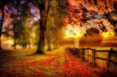 Autumn is a very beautiful season since all the trees are changing their color…