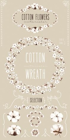 NEW! Cotton flowers watercolor by Celta on Creative Market