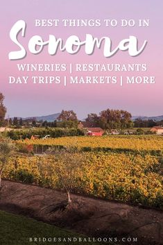 19 things to do in sonoma county, california including top wineries, best restaurants and markets, day trips and more. the ultimate guide to the region, Sonoma Wineries, Napa Sonoma, Sonoma Restaurants, Sonoma Coast, Sonoma County California, California Travel, California California, Northern California, Santa Rosa California